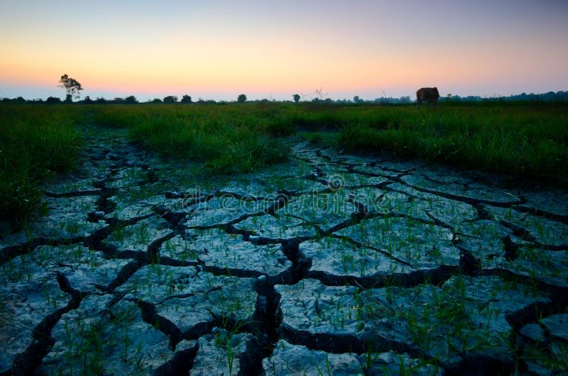 Dry cracked desert. The global shortage of water on the planet. Global warming and greenhouse effect concept. Dry cracked desert global shortage water royalty free stock images