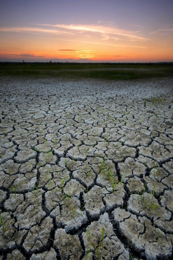Dry cracked desert. The global shortage of water on the planet. Global warming and greenhouse effect concept. Dry cracked desert global shortage water royalty free stock photos