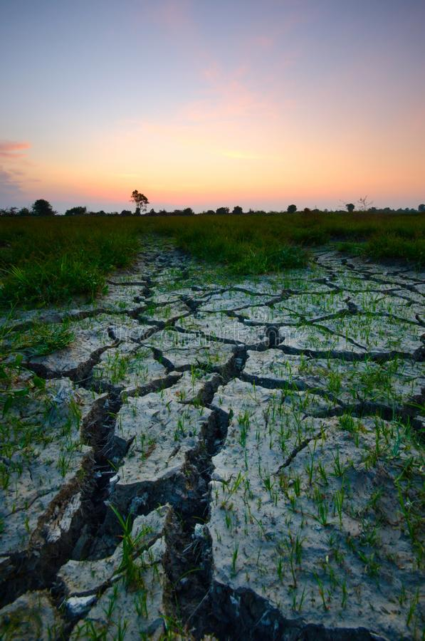 Dry cracked desert. The global shortage of water on the planet. Global warming and greenhouse effect concept. Dry cracked desert global shortage water royalty free stock photo