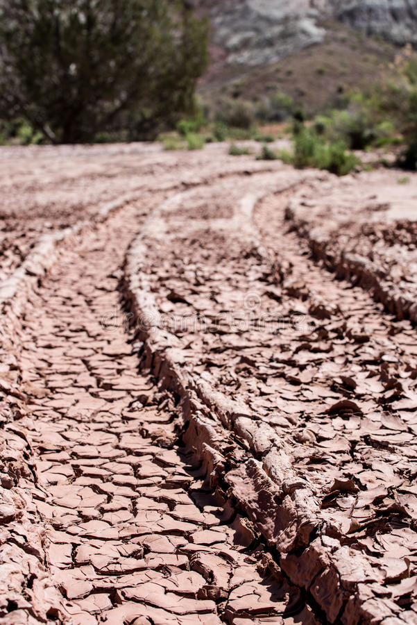 Free Dry Cracked Desert Ruts With Royalty Free Stock Photos - 53209008
