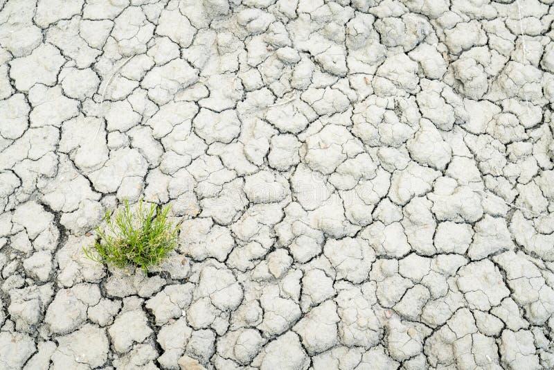 Dry and cracked desert soil backgroiund royalty free stock images