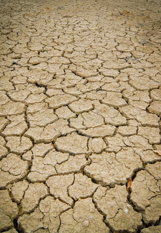 Dry and cracked earth background royalty free stock image