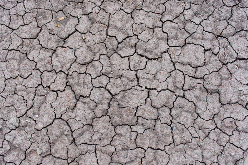 Dry cracked earth backgrounds/textures. Crack earth texture. barren environmental global extreme nature ground heat damage land parched abnormal disaster royalty free stock photos