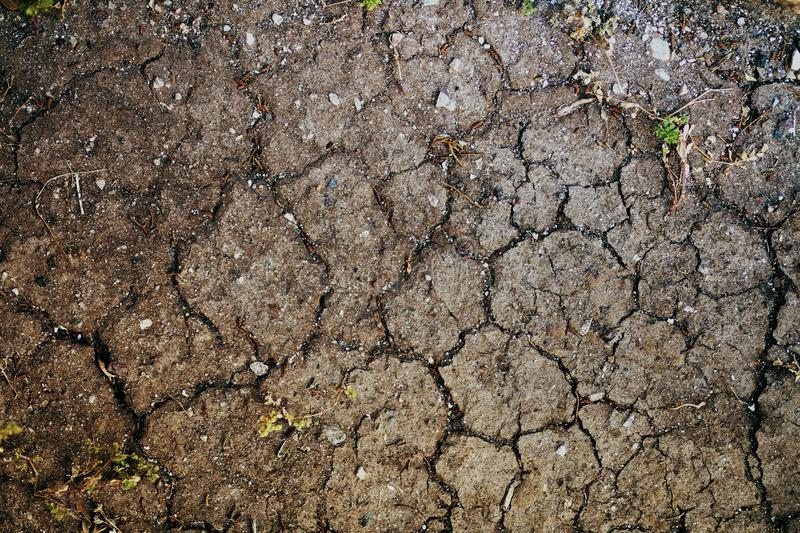 Dry cracked ground in hot summer stock photos