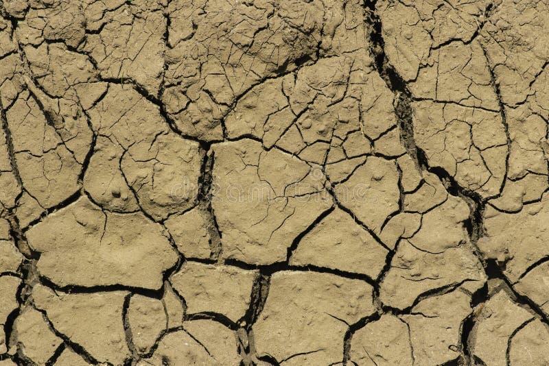 Dry Cracked Mud. Close up of dry cracked mud ona hot day royalty free stock image