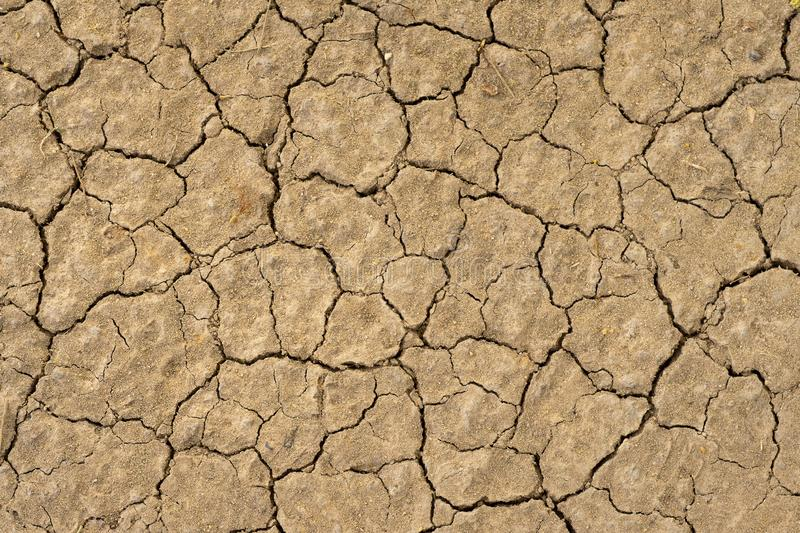 Dry cracked soil texture background barren of drought lack . stock photography