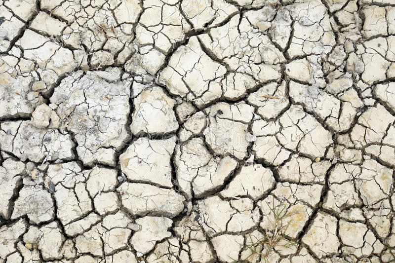 Dry cracks. In dried out soil royalty free stock photos