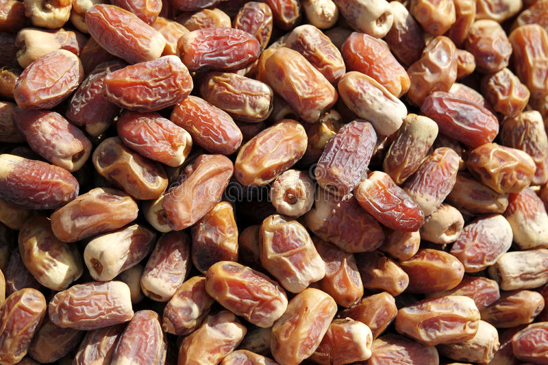 Dry date palm fruits stock photo