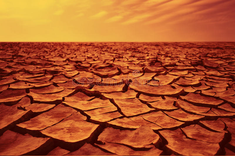 Dry desert. With countless cracks royalty free stock photos