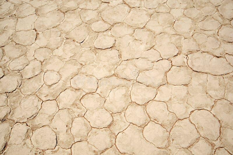 Dry desert. Dry land of desert namibia royalty free stock image