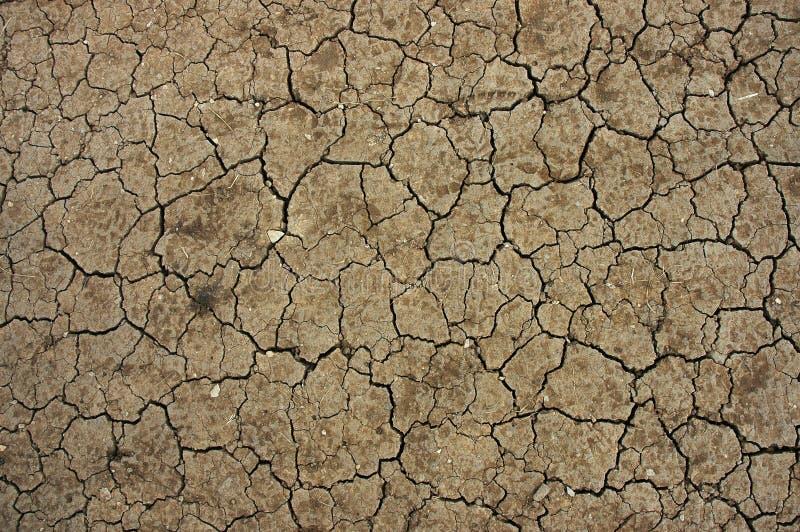 Dry desert. A dry desert land texture royalty free stock images