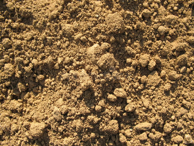 Dry Dirt Soil. A close-up of loose and dry soil ground stock photography