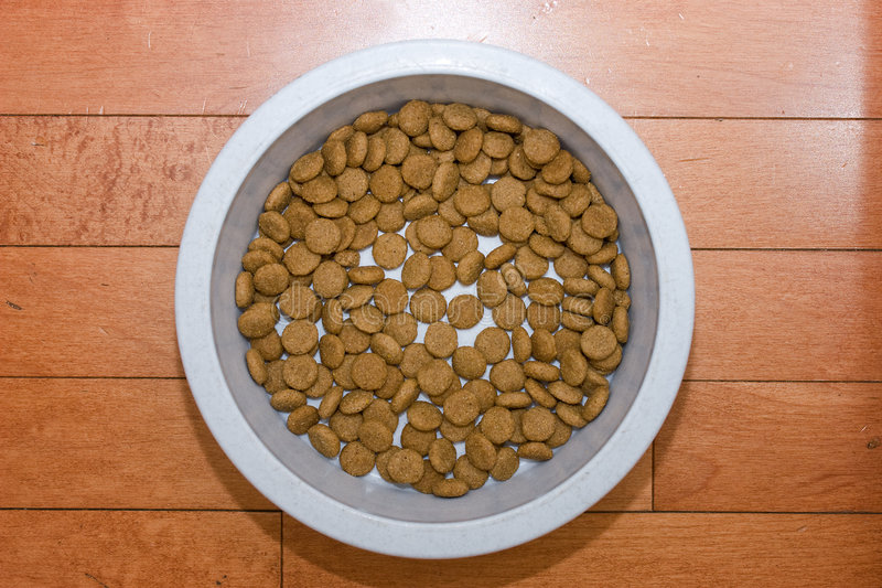 Download Dry dog food stock image. Image of feed, canine, bowl - 7457749
