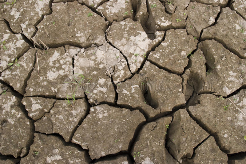 Download Dry earth stock image. Image of color, gray, desert, backgrounds - 11390051