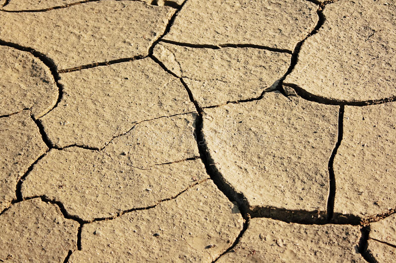 Download Dry earth stock photo. Image of fracture, dust, crack - 12705006