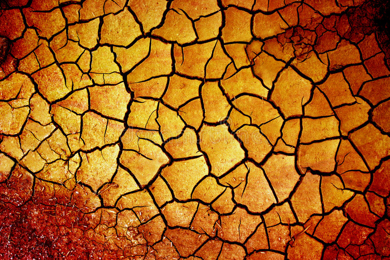 Download Dry earth stock photo. Image of desert, field, ground - 1303128