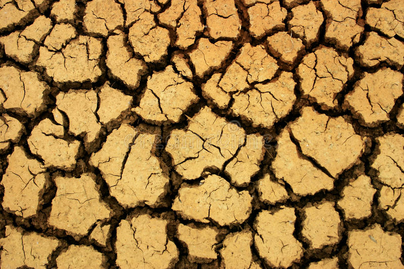 Dry earth. Parched dry earth,waterless desert like condition stock images