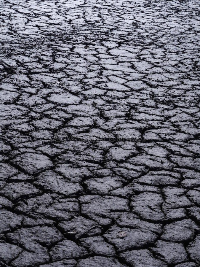 Free Dry Earth Stock Images - 39801994
