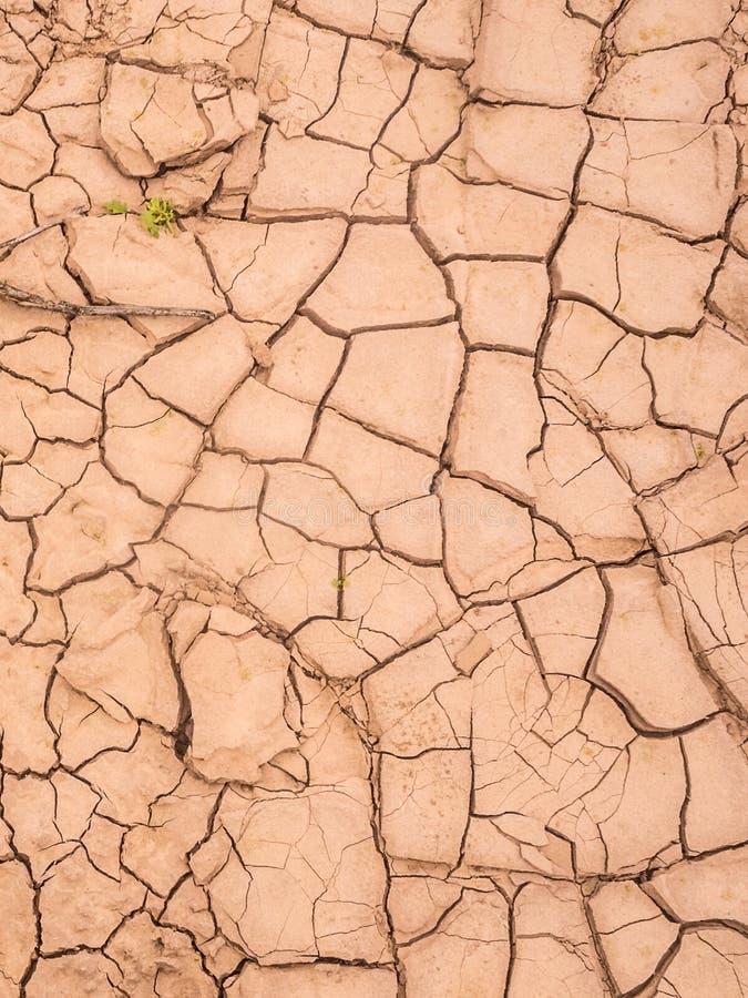 Dry floor in the desert of Atacama.  stock images