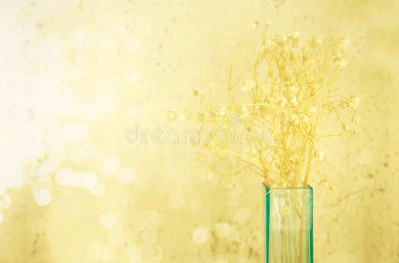 Dry flower in glass blue vase with soft bokeh light nature background. Dry small flower in glass blue vase with soft bokeh light nature background royalty free stock photos