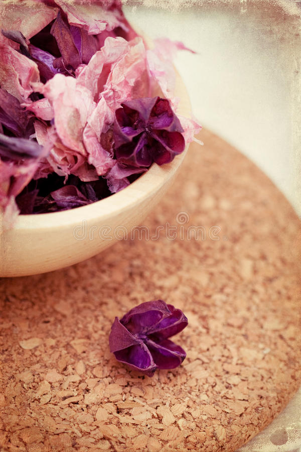 Download Dry flower mix stock image. Image of blossom, utensil - 19748751