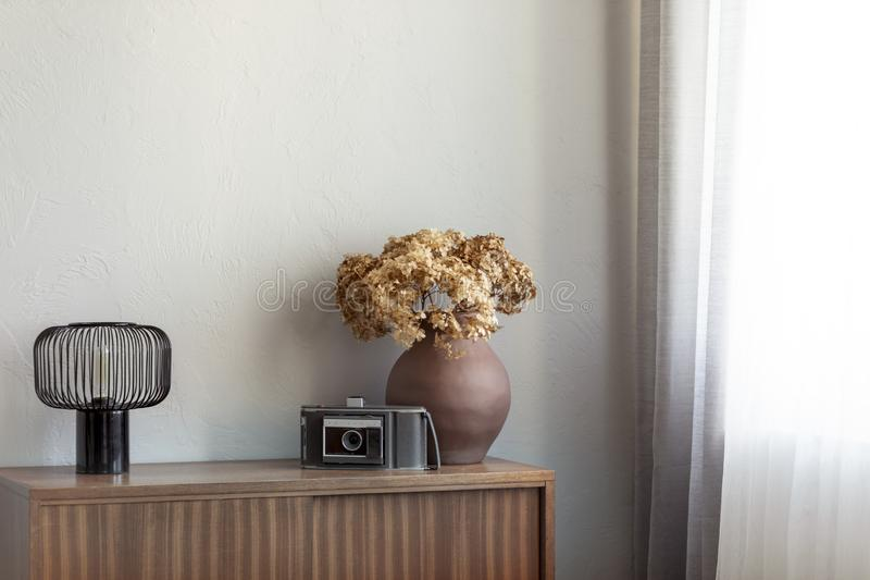 Dry flowers in brown pottery vase next to old vintage camera and industrial lamp on retro wooden cabinet stock photography