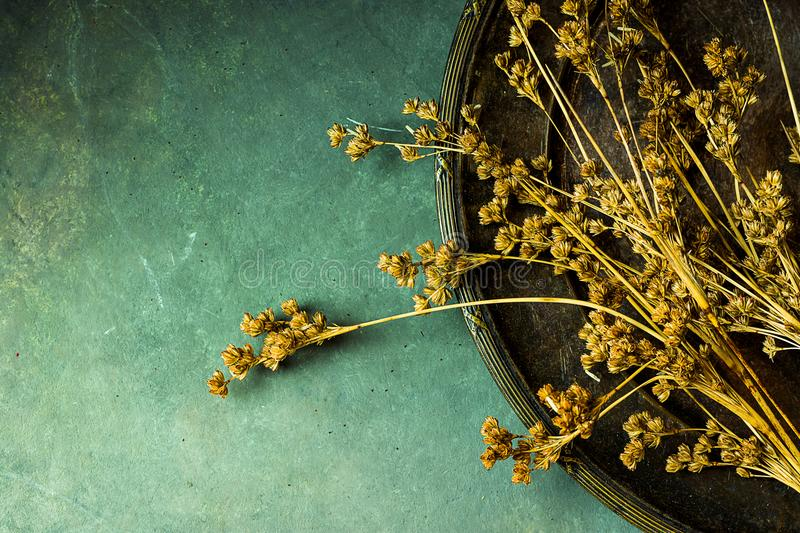 Dry flowers on vintage old metal dish. Dark stone concrete background. Copy space for text. Cozy fall atmosphere royalty free stock photo