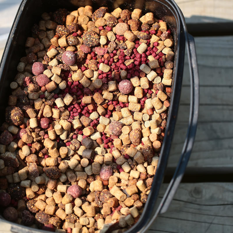 Dry food boilies stock photo