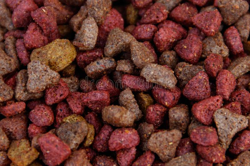 Dry food for cat or dog close-up royalty free stock photos