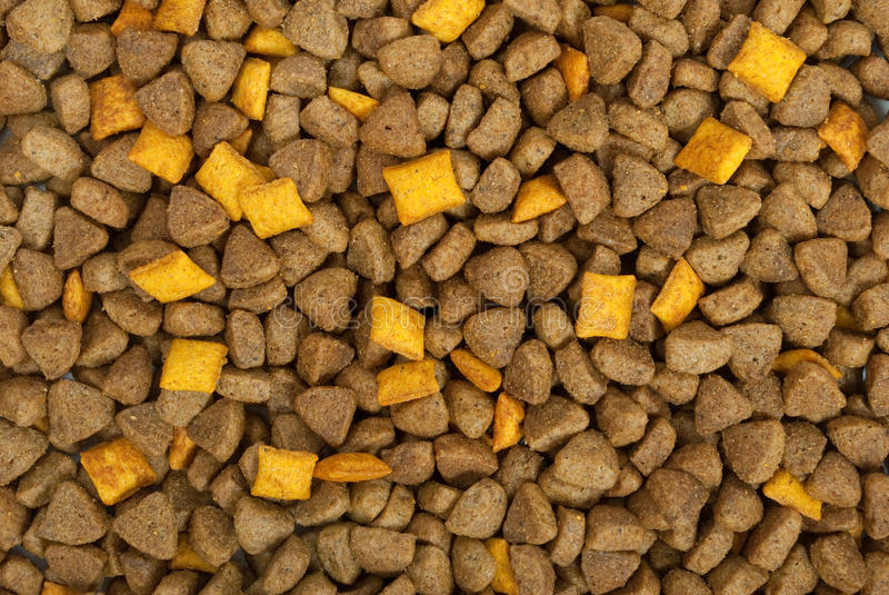 Download Dry food for dogs stock photo. Image of cooking, kernel - 27060764