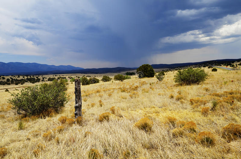 Dry grass field. A dry grass field under cloudy sky stock images