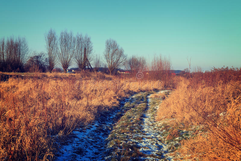 Dry grass field. Vintage color tone stock photography