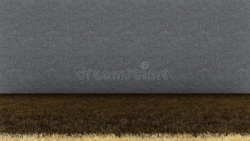 Dry Grass Floor and Concrete Wall royalty free stock photo