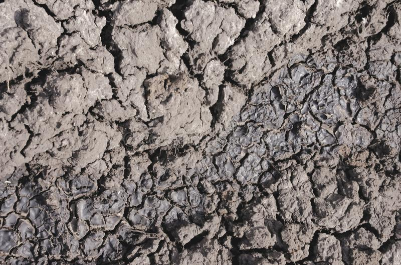 Dry ground. Dry gray ground with many cracks stock photo