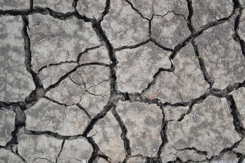 Dry ground. Summer , dry ground is crack royalty free stock image