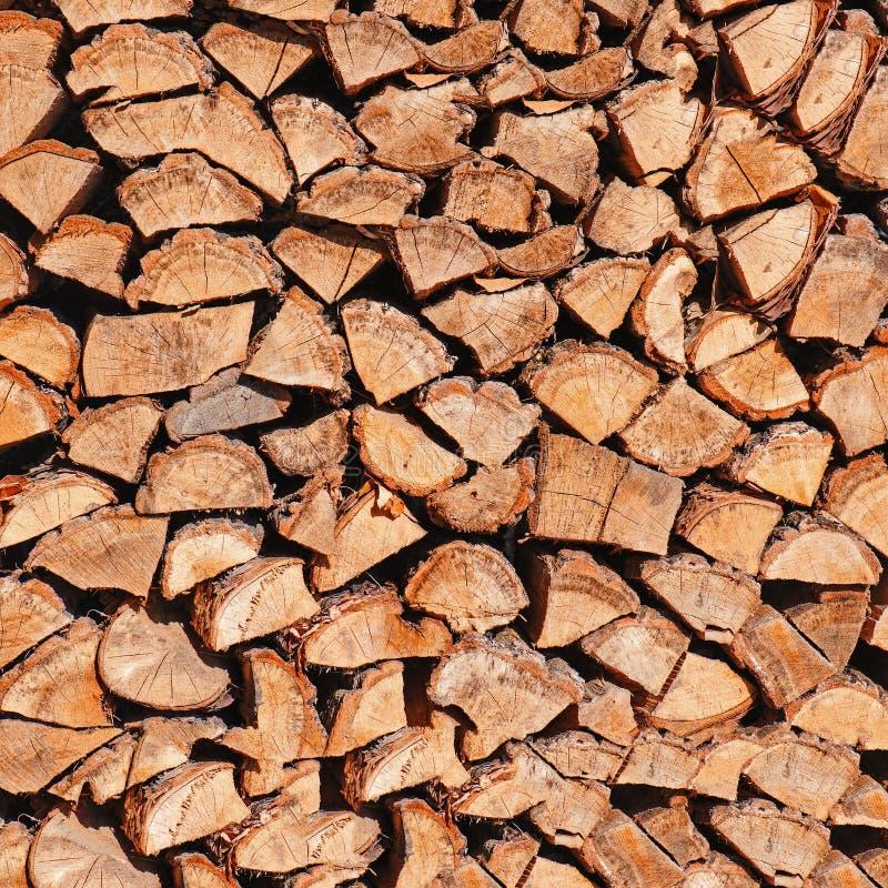 Dry högg av vedträ loggar in högen. royaltyfri fotografi