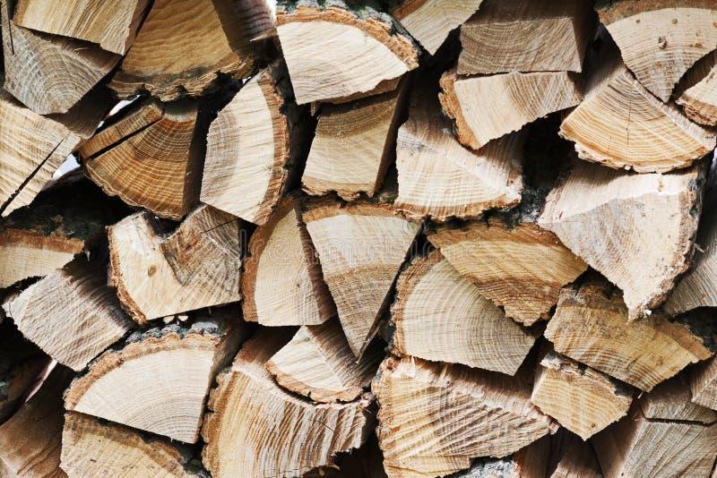 Dry högg av vedträ loggar in högen royaltyfri fotografi