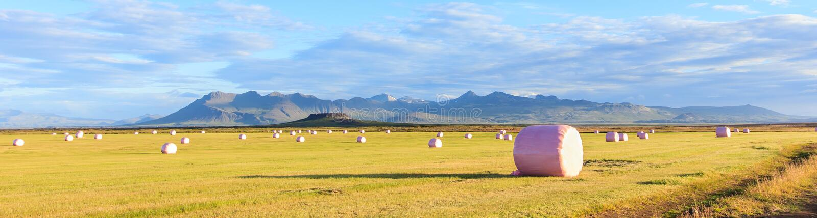 Dry hay bale in pink plastic film to stock for winter season with colorful mountains as a background royalty free stock photo