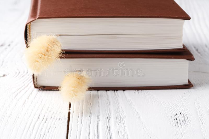 Dry herb on the books stock image