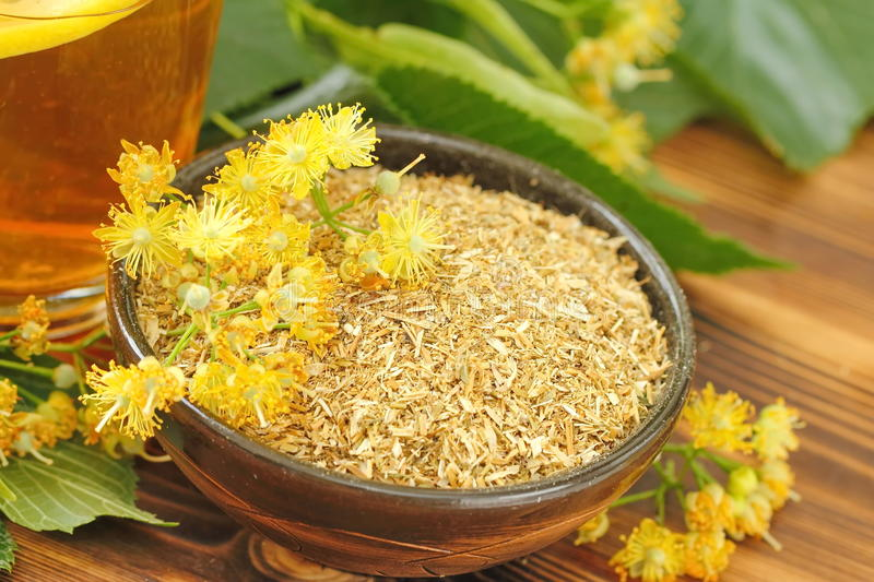 Dry herbal tea with linden flowers stock image