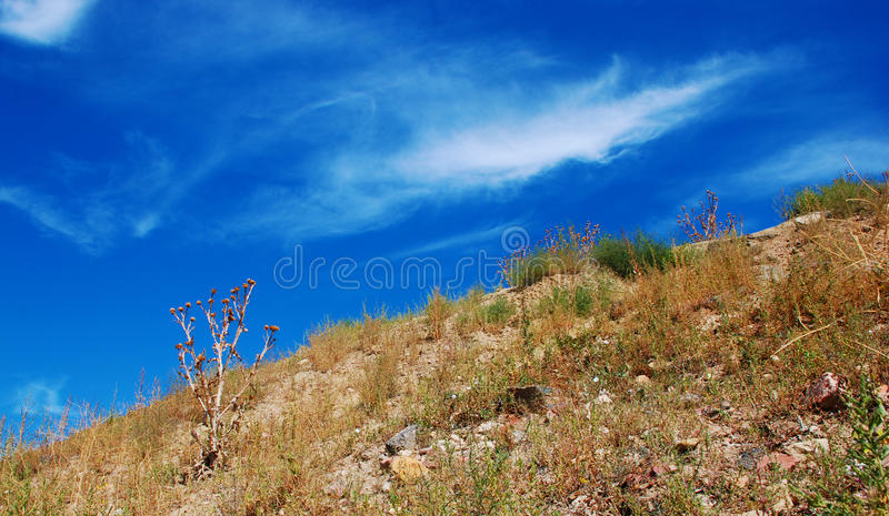 Dry Hillside and Interesting Sky. Dry hillside with thistles and a big blue sky with interesting clouds stock photo