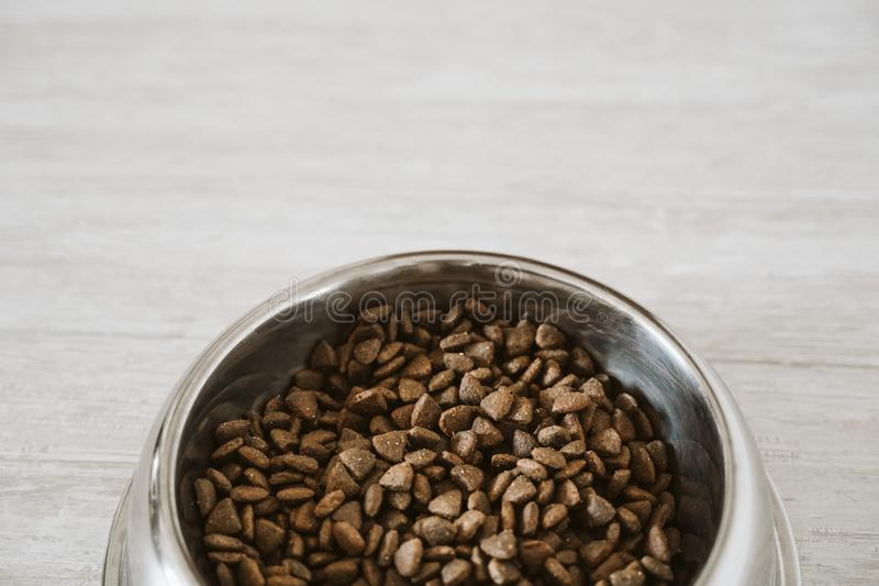 Dry kibble dog food in bowl on the floor royalty free stock photos