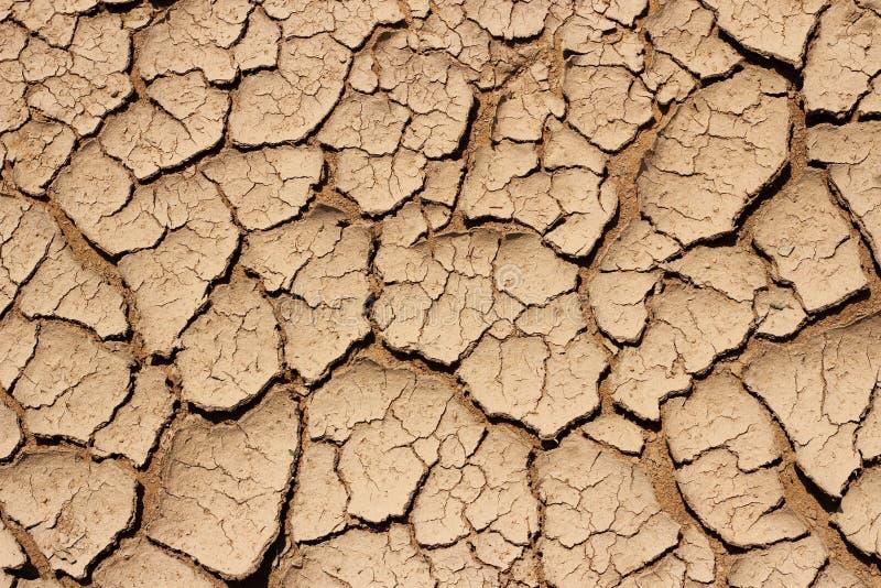 Dry knäckte jordtextur arkivfoto