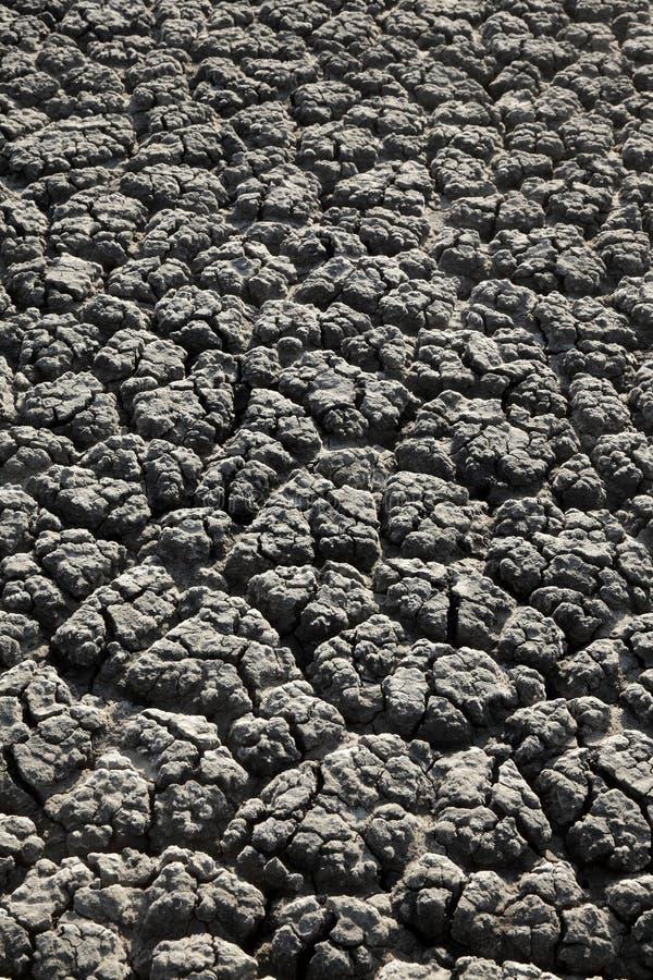 Dry knäckte landtextur arkivbilder