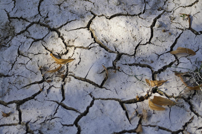 Dry land. Image showing the result on the land of desertification and drought royalty free stock photography