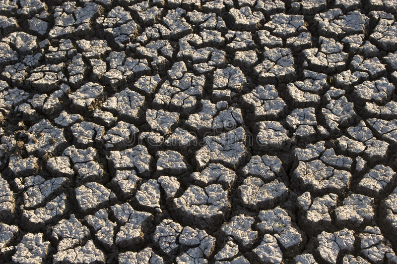 Download Dry land stock photo. Image of dead, texture, cracked - 22239780