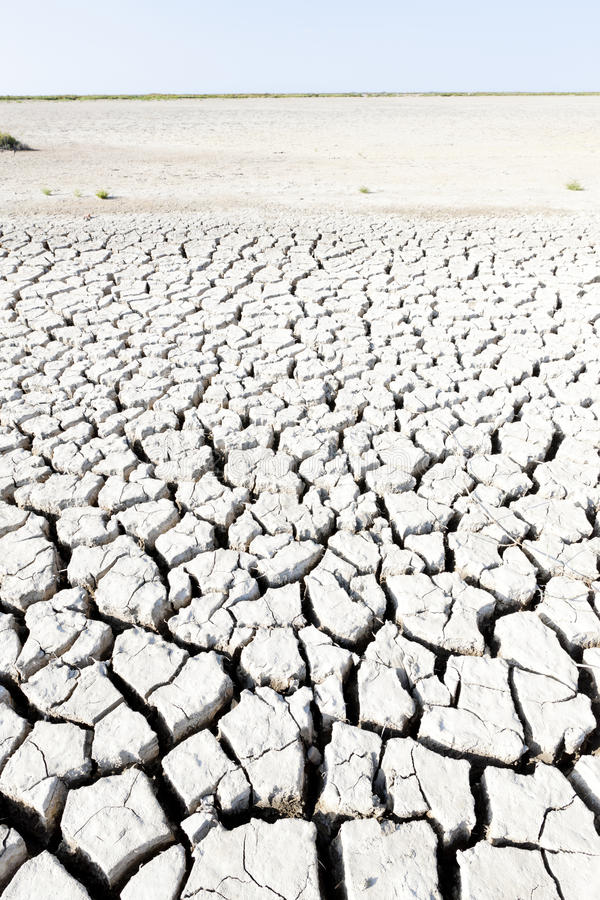 Download Dry land stock image. Image of camargue, cracked, exteriors - 27009527