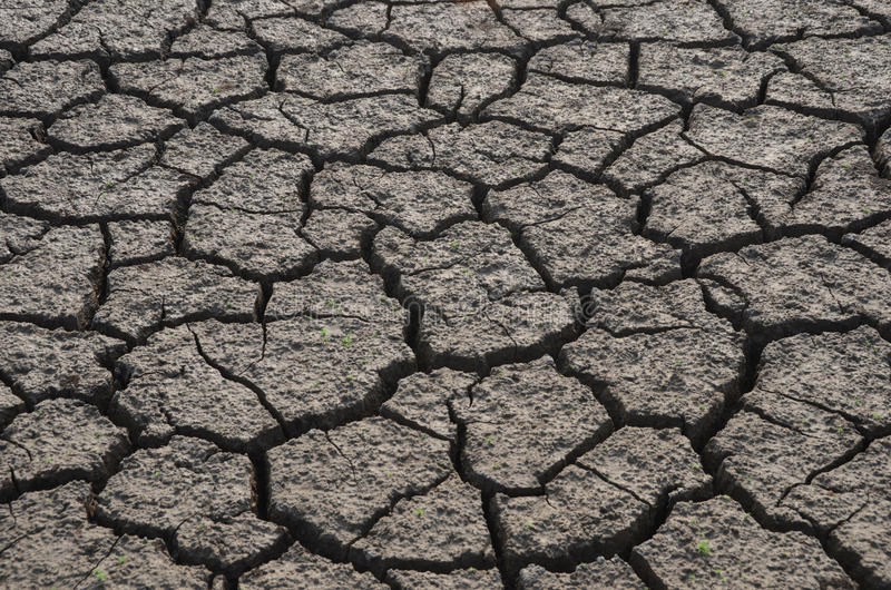 Download Dry land stock image. Image of background, plant, india - 29536535