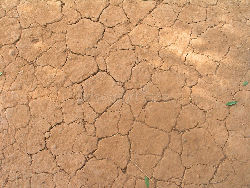 A dry land royalty free stock images