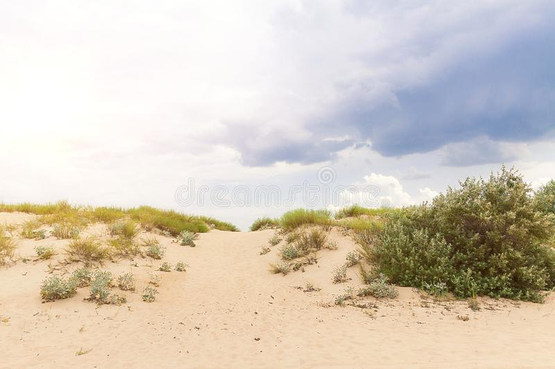 Dry land without water for days drought deseart. Dry land without water for days drought deseart stock photography